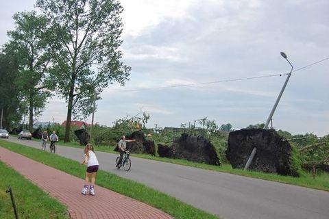 Nawa�nica nad Myszy�cem. Po�amane drzewa, zniszczone groby (zdj�cia)