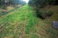 Linia Ostrołęka-Chorzele coraz bliżej remontu