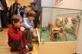 Kajko i Kokosz w ostrołęckim muzeum (zdjęcia)
