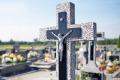 Skrzynka skarg: ktoś wyciął 24-letnią tuję na cmentarzu - szkic